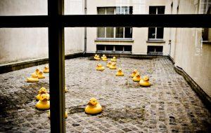Capture Colette. Also, ducks.