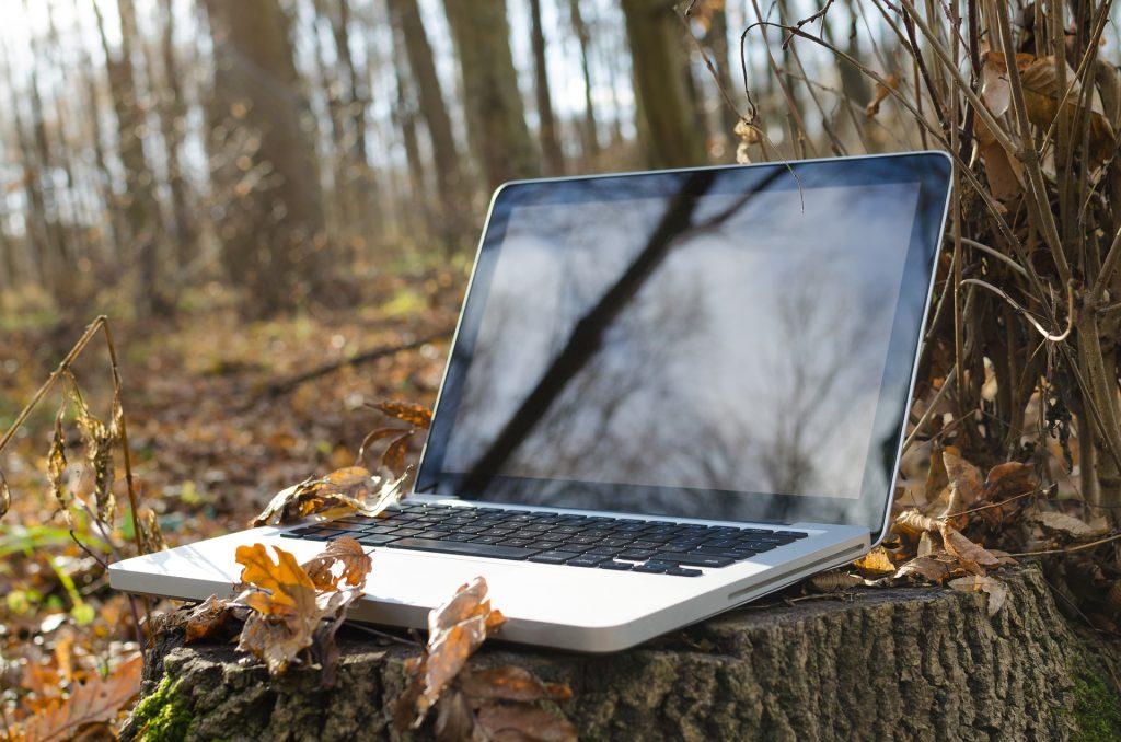 The wild laptop, resplendant in its natural habitat